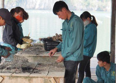 réparation de filets à huîtres