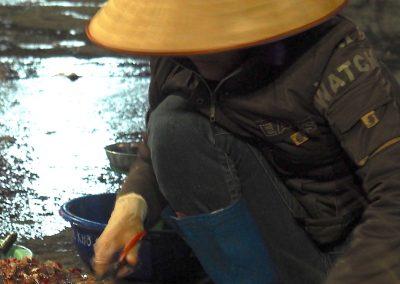 scène de pluie à Hon Gai