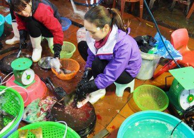 vendeuse de poissons à Hon Gai