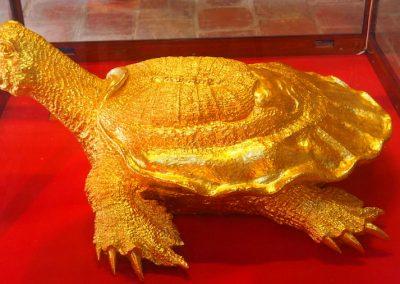 tortue en or dans le temple de la littérature