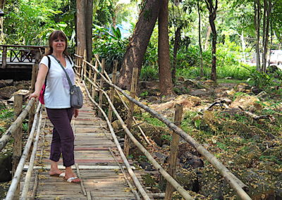 pont de bambou