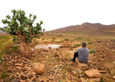 flaque d'eau dans le désert de Foum Zguid