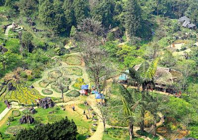 jardin d'orchidées du mont Ham Rong