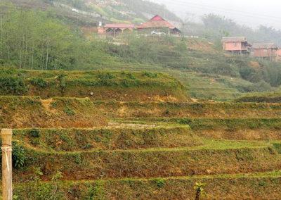 rizières en terrasses de la région de Spa
