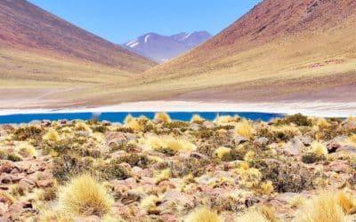 San Pedro d'Atacama et le désert d'Atacama