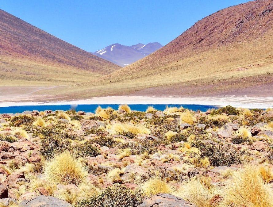lagune dans la Région d'Atacama