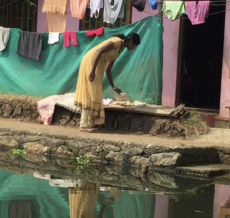 la vie dans les backwaters